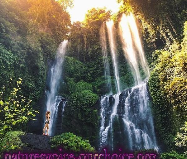 The Most Beautiful Hidden Waterfall in Bali